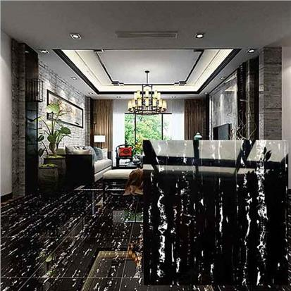 Black Polished Ceramic Floor Tile 600 x 600mm HS629GN