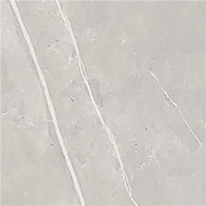 Light Grey Glazed Porcelain Floor Tile  HHG82102